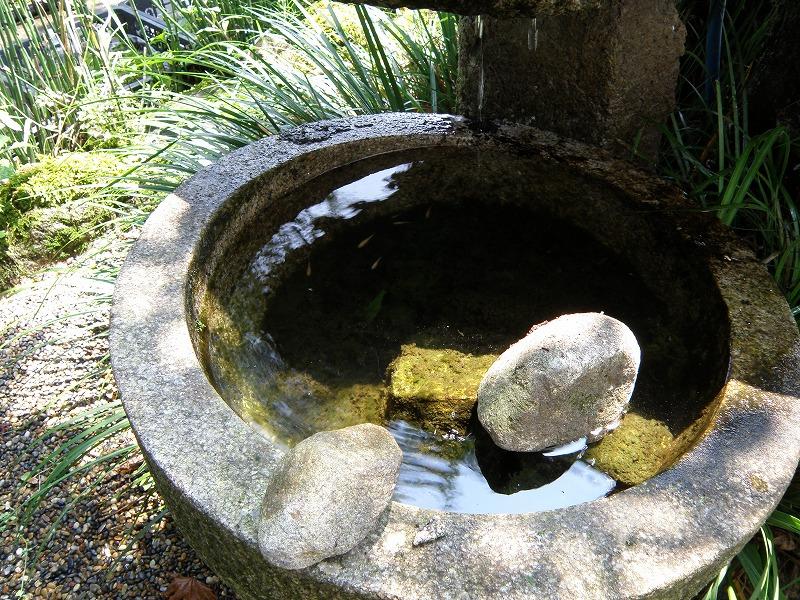 流れ 水鉢 和風 メダカ
