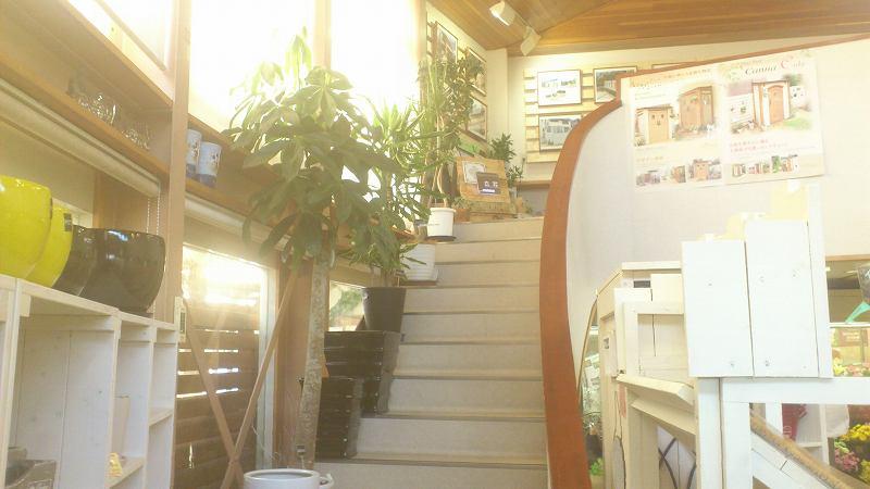ガーデン相談ギャラリー入口階段