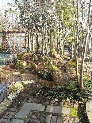 立花ガーデン流れ2